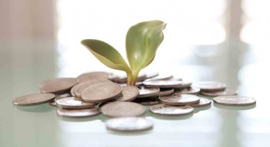 equity-crowdfunding-pic
