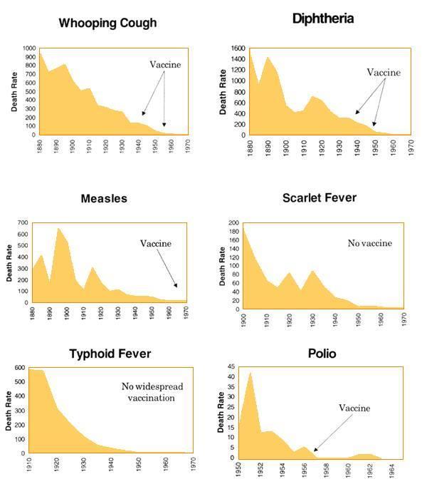 vaccine charts 4